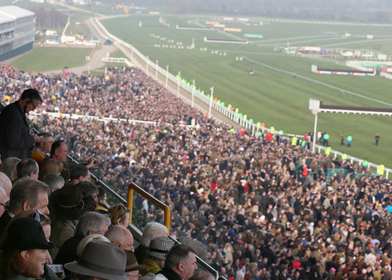 Get Cheltenham tips for the 2015 festival